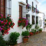 Saker att göra i Marbella trots coronarestriktioner