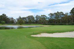 Spela golf med en förening