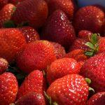 Spaniens ekonomi växer, spanskt flygbolag säljs och förberedelser för jordgubbsäsongen